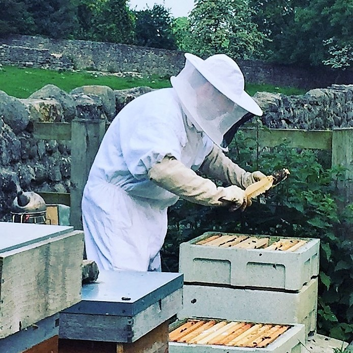 James Checking Hives