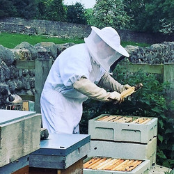 James Checking Hives