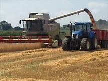 Charles & James Harvesting