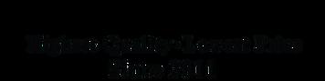 Ultimate-Custom-Coins-Logo1.png