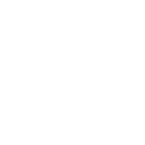 single speed gearbox icon.png