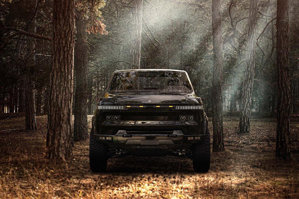 Woods Misty Zoomed in.jpg