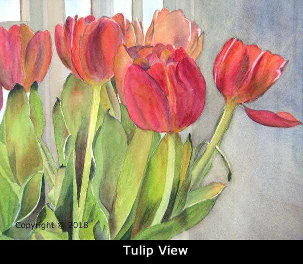 2TulipViewWebIMG_0931