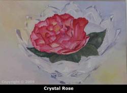 4crystalrosewebsiteimg_0010