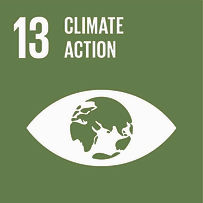 SDG 13 CLIMATE ACTION (1).jpg