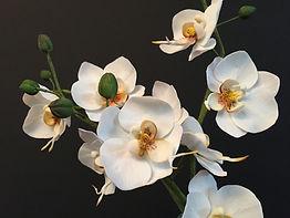 himmelrosa Zuckerblumen