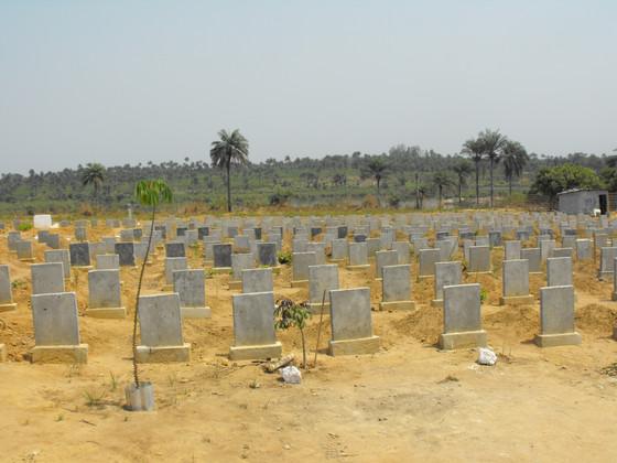 Ebola - the aftermath