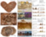 Archosaur eggshell biomineralization