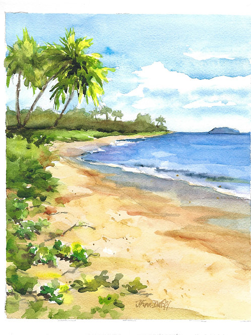 Maui Beach Scene65 min