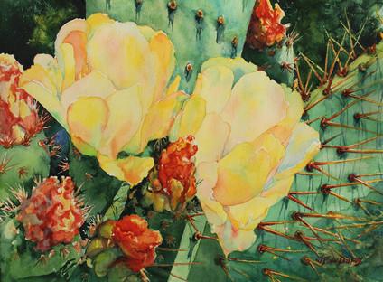 WT Website Cactus in Bloom.jpg