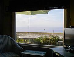Bay Window View.jpg