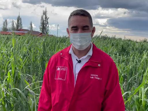 Seremi de Agricultura explica daños de sistema frontal