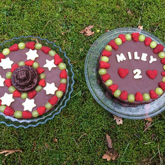 Two Birthday 🎂 cakes for one special li