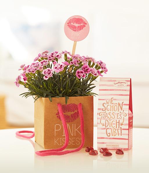Sooo pink, sooo niedliche kleine Blüten in Rosa und Pink, sooo unwiderstehlich duftend: Diese Eigenschaften machen die süße Pink Kisses® zum perfekten Symbol einer besonderen Freundschaft.
