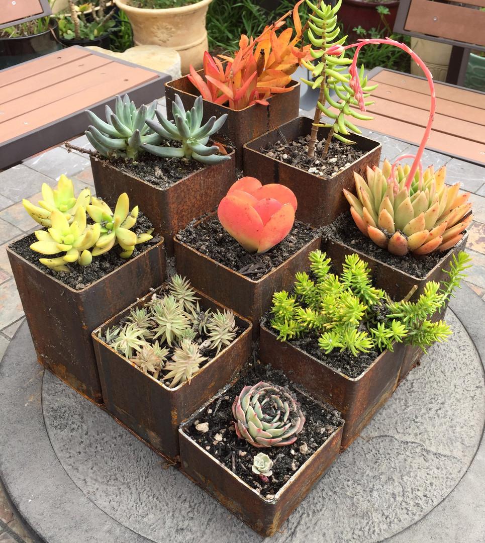 Planter_3x3.jpg