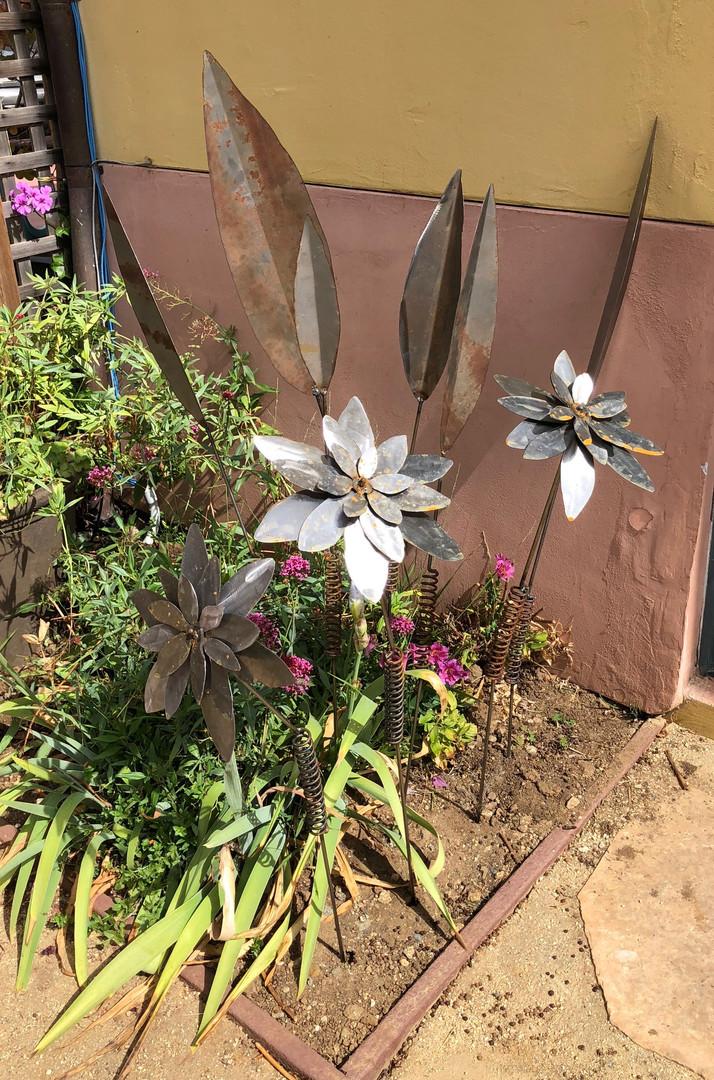 Flowers+Leaves_IMG_6827.jpg
