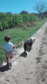Educazione cinofila per bambini al Doggy Splash di Torino
