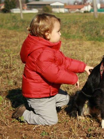 Bambino fa educazione con Border Collie