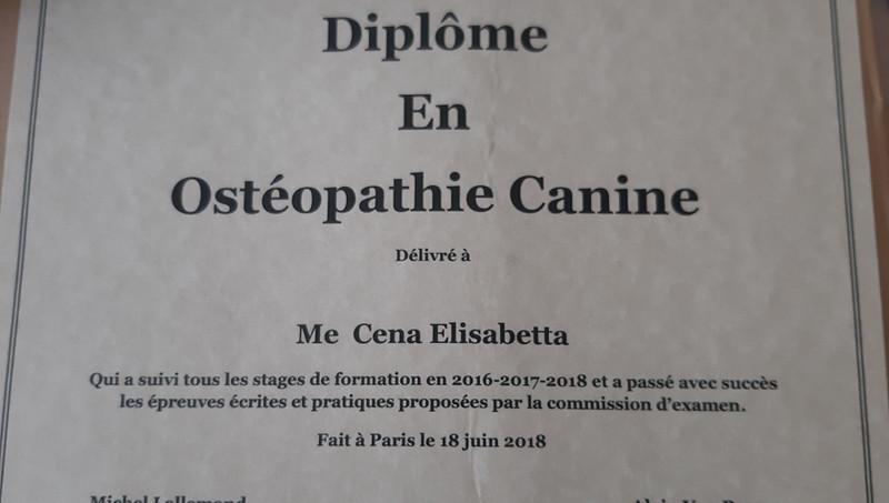 diploma Iforec Elisabetta Cena Doggy Splash Torino