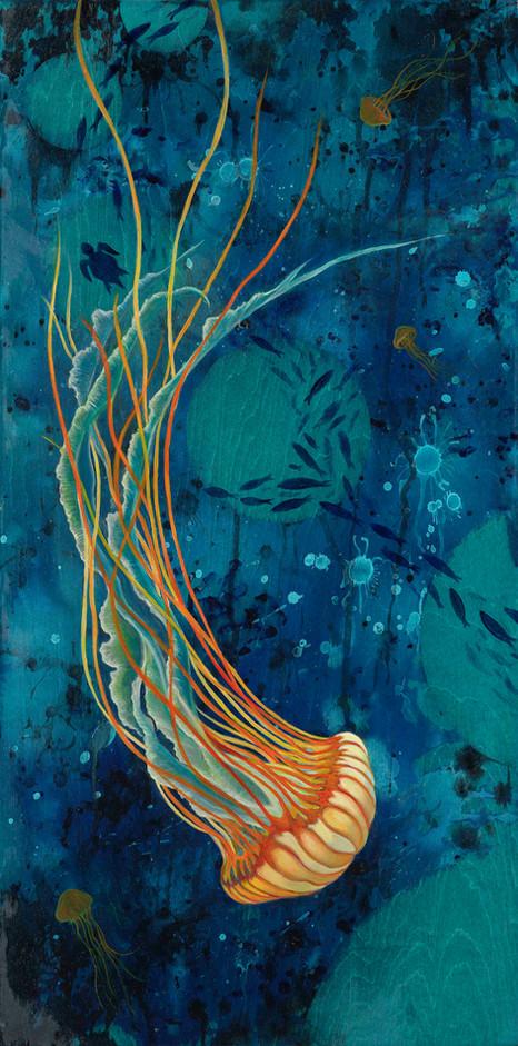 Medusa Bloom 1