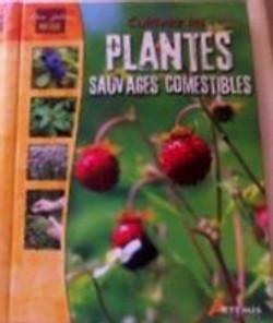 Cultiver les plantes sauvages comestible