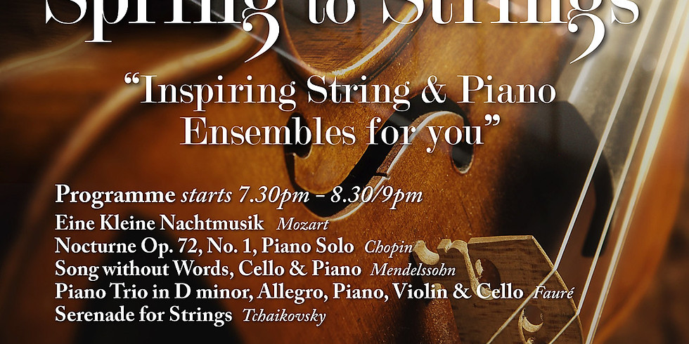 Spring to Strings Concert
