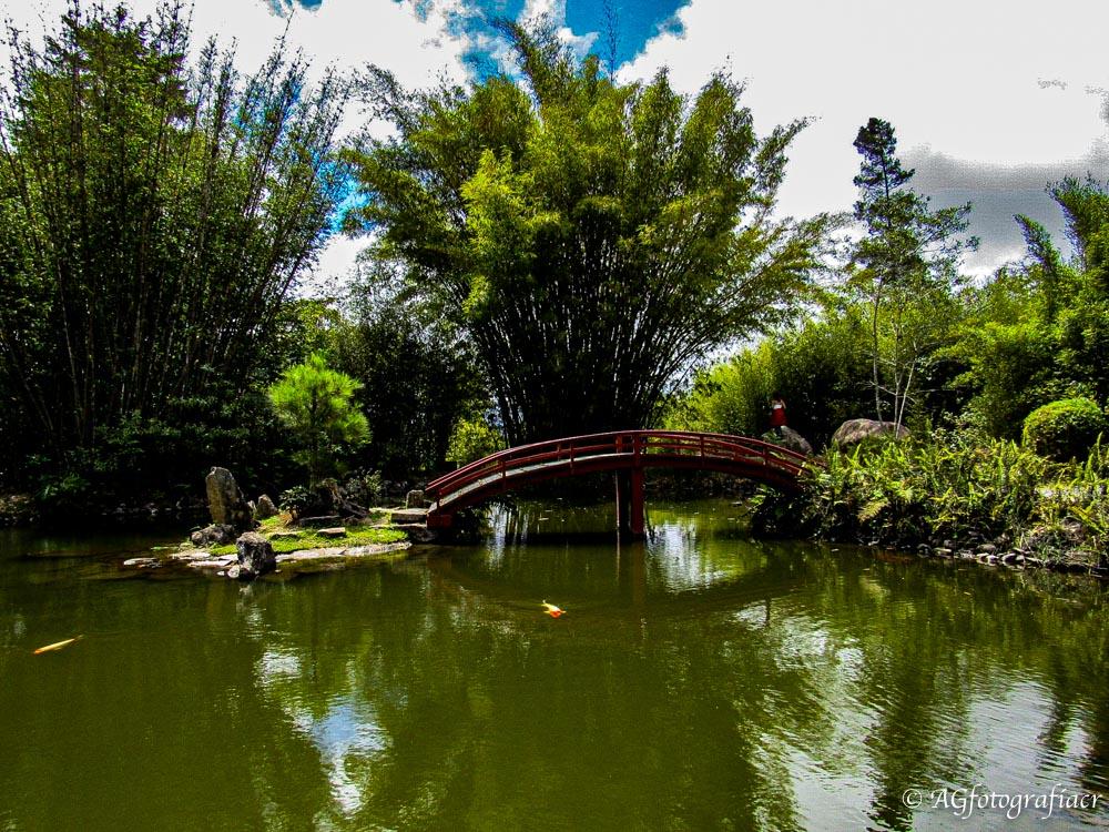 Jardín Botánico Lankester, Cartago