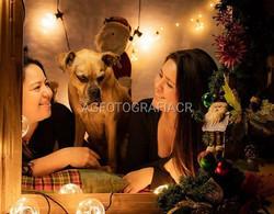 #agfotografiacr #navidad #merrychristmas