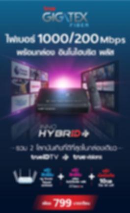 InnoHybrid 799.jpg