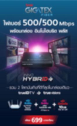 InnoHybrid 699.jpg
