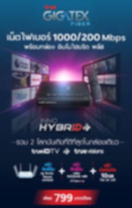 InnoHybrid799.jpg