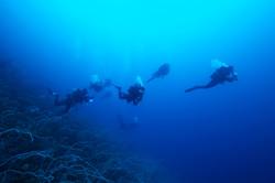 Scuba Divers Deep Sea