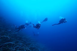 Divers Plongée en eau profonde