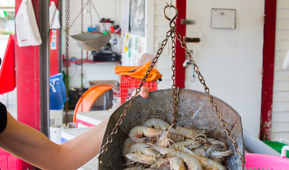 Selecting the freshest Louisiana seafood