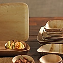 Biodegradable Plates and Bowls