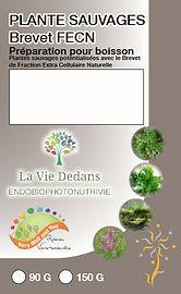 plantes sauvages fecn.jpg