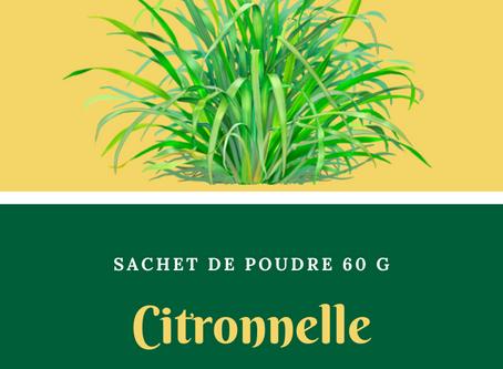 Natura Plantes®: Citronnelle