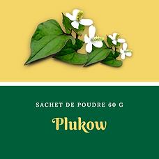 plukow.png
