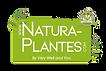 NATURA PLANTES LOGO_HD_2019_PNG.png