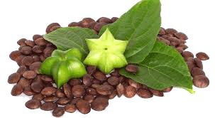 Natura plantes : Sacha inchi