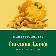 curcuma longa.png