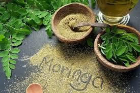 Very Well And You®: Moringa