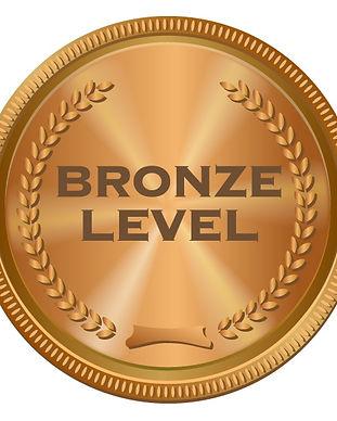 bronze-image_orig.jpg