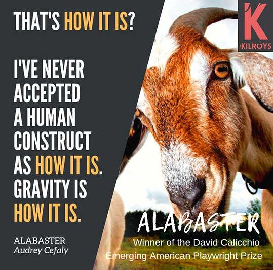 alabaster-w-kilroys-link_sm.jpg