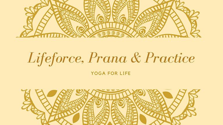 Lifeforce, Prana and Practice