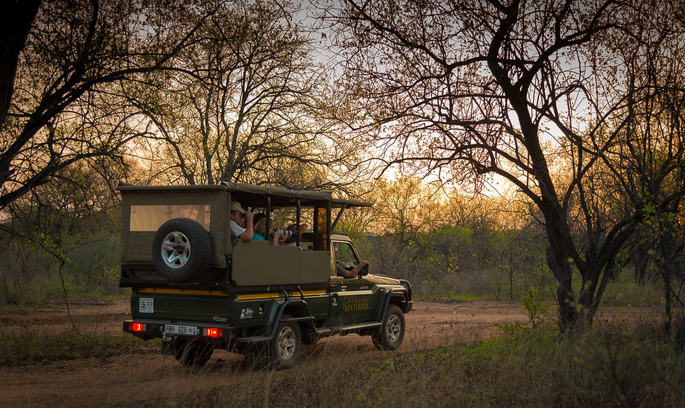 Matimba Bush lodge have their own open vehicle safari to take guests on safari in the Kruger Natinal Park