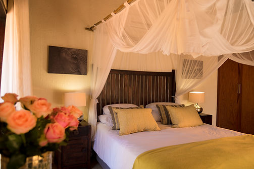 Elephant suite in Matimba Ldge