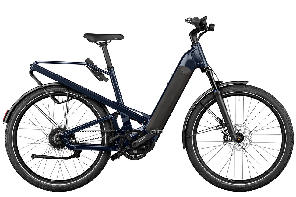 RIESE & MÜLLER eBike Homage