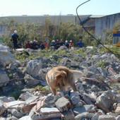 Gobierno de El Salvador selecciona el Método ARCÓN para salvar vidas frente a COVID y otros desastre