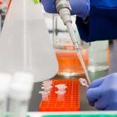 España entre líderes de países con dos dosis de vacuna